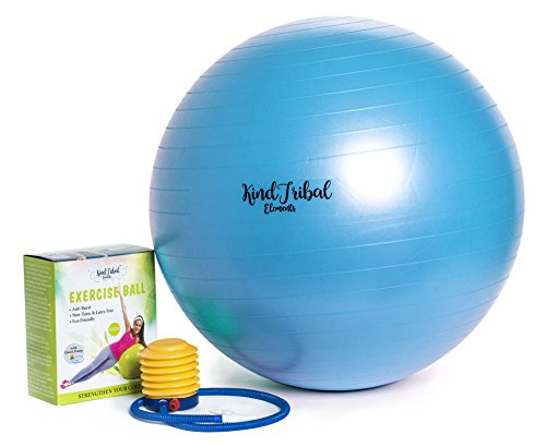 Therapeutic Ball Exercise (Pro Fitness 65cm Exercise Ball By KindTribal Elements: Anti-Burst/Slip Balance Gym Body Ball-For Yoga, Pilates, With Foot Pump-Flexible Therapeutic, Birthing-Use At Home-As Office Chair (Blue))
