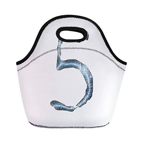 Semtomn Lunch Bags Antique Jagged Edge Blue Ice Number Five in 3D Neoprene Lunch Bag Lunchbox Tote Bag Portable Picnic Bag Cooler Bag (Chisel Lettering)