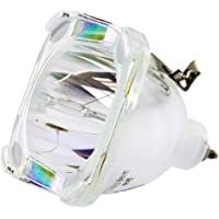 Philips OEM PHI/389 Replacement DLP Bare Bulb (RP-E022-3)