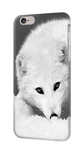 R2569 White Arctic Fox Case Cover For IPHONE 6S PLUS - Arctic White Cover