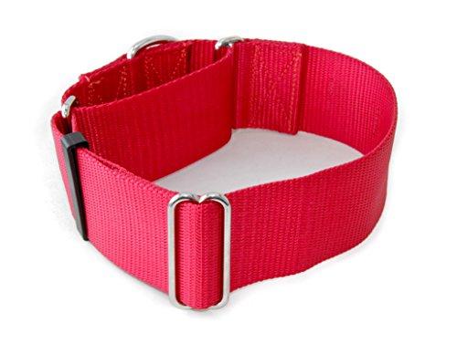 2 Inch Martingale Dog Collars - Heavy Duty Nylon
