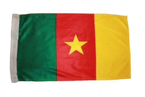 Cameroon FIFA Soccer World Cup 12