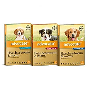 Advocate Flea, Heartworm and Worm Control for Medium Dogs, Aqua, 6 Pack Click on image for further info.