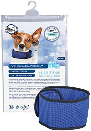 Doogy - Collar refrescante para Perro: Amazon.es: Productos para ...