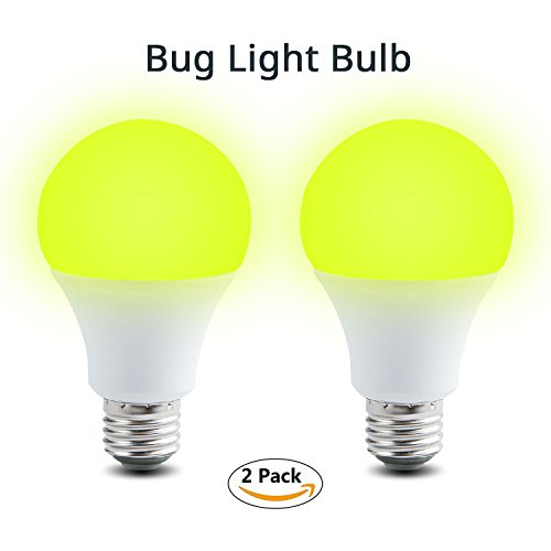 Insects Led Lights in Florida - 6