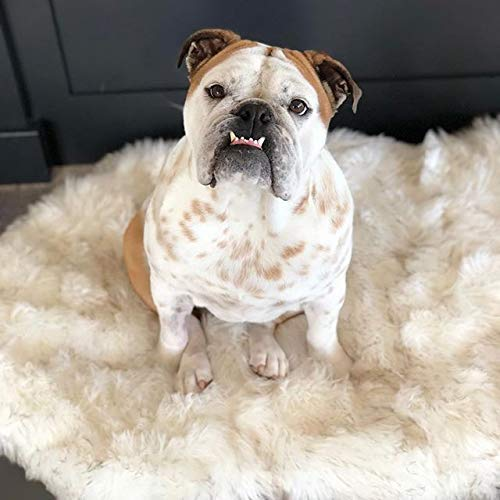 Treat A Dog Puprug Faux Fur Memory Foam Orthopedic Bed, Premium Memory Foam Base, Ultra-Soft Faux Fur Cover, Modern and Attractive Design (Small/Medium, Curve White)