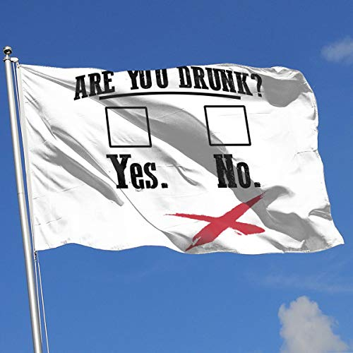 (QphonesFlag are You Drunk Funny Beer Drinking Flag 3x5-Flags 90x150CM-Banner 3'x5' FT)