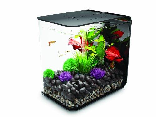 biOrb FLOW 15 Aquarium with LED Light – 4 Gallon, Black by biOrb