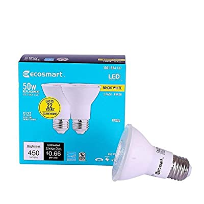 50W Equivalent Bright White PAR20 Dimmable LED Flood Light Bulb (2-Pack)