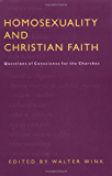 Homosexuality and Christian Faith: Questions of Conscience for the Churches: Questions of Conscience for Churches