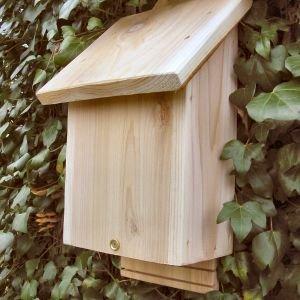 Bat Nest Box PLUS laminated field guide Wildlife World