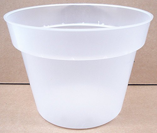 6 1/2 Inch Clear Plastic Pot for Orchids Round – Quantity of 8 For Sale