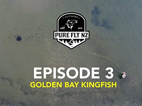 (Golden Bay Kingfish)