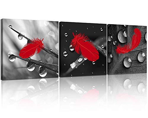 NAN Wind 3 Pcs Red Wall Art Canvas Prints Red Feather on The Drops of Water Black and White Wall Art Abstract Wall Decor Paintings on Canvas Stretched and Framed Ready to Hang for Home Decor (And White Black Bathroom Wall Art)