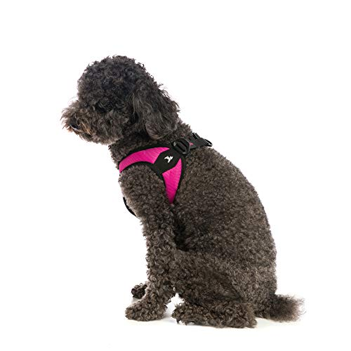Gooby Escape Proof  Escape Free  Easy Fit Dog Harness For