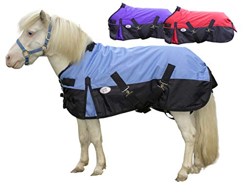 Blanket Pony Stable - Derby Originals 600D Ripstop Nylon Waterproof Medium Weight Winter Mini Horse and Pony Turnout Blanket - 200g Polyfil, Sky Blue