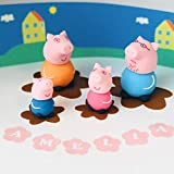 Pig Cake Toppers Edible Icing Personalised Birthday Decorations Unofficial