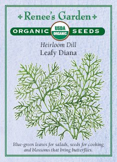 """Dill, """"Leafy Diana"""" Heirloom - Certified Organic Seeds"""