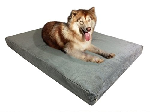 47''x29''x4'' Gray Colored Washable Microfiber Suede Gusset cover Waterproof Therapeutic Orthopedic 100% Solid True Dense Memory Foam Pad Pet Dog Bed Crate FREE 2nd External Cover Colored Gussets