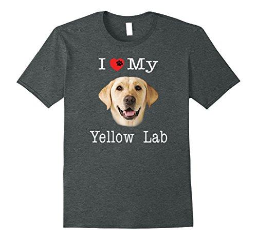 Yellow Lab Portrait - 5