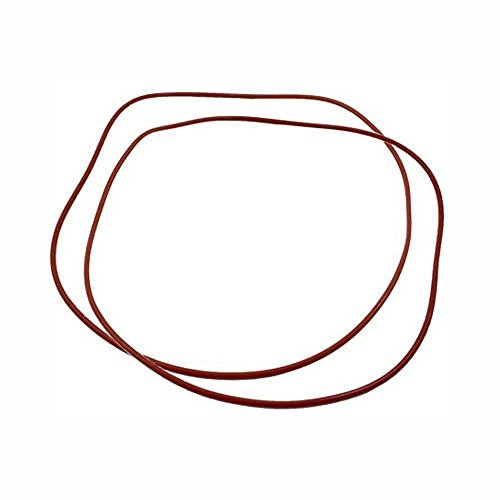 Raypak 006713F O Ring Gasket (2)185-405 206-406 207-407-Kit