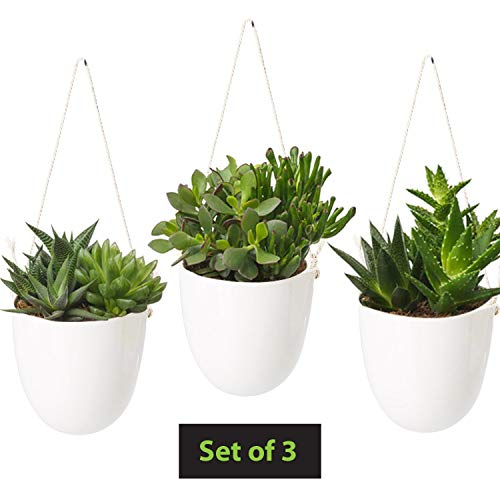 Hanging Planters for Indoor Plants - Home, Wall, Bathroom Decor - White Ceramic Succulent Cactus Plant Hangers - Air Plant Pot - Fake Flowers Holder - Outdoor Flower Planter Pots - Patio Hanger Set