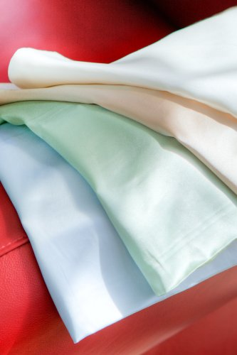 Fishers Finery 19mm 100 Pure Silk Pillowcase Good