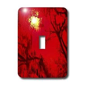 3dRose LLC lsp_8007_1 Sun Drips Red, Single Toggle Switch