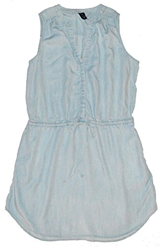 GAP Womens Blue Chambray Sleeveless Shirtdress XL