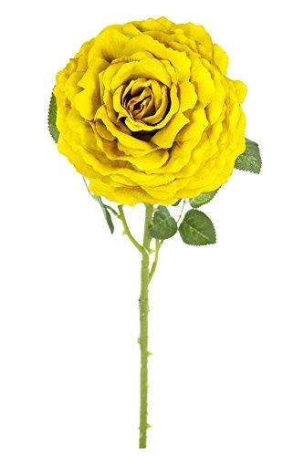 Renaissance 2000 Big Size Rose, 20.9' L x 1' H x 20.9' W, Gold