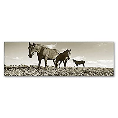 Trademark Fine Art Kentucky Horses by Preston Hanging Art Piece