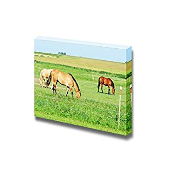 Three Horses Grazing on Green Meadow Wall Decor