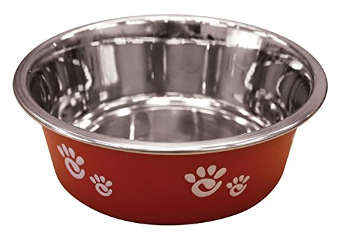 Ethical Pet Barcelona Matte and Stainless Steel Pet Dish, 16-Ounce, Raspberry (Feeder Bird Barcelona)