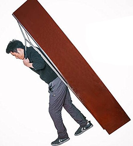 Moving Straps Lifting Straps One Person for Moving Furniture: Amazon