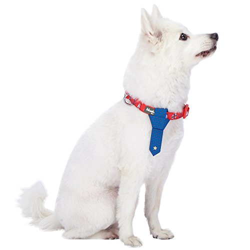 Blueberry Pet 4 Patterns Cardinal Red Nautical Sailboat Designer Tie Dog Collar, Small, Neck 12