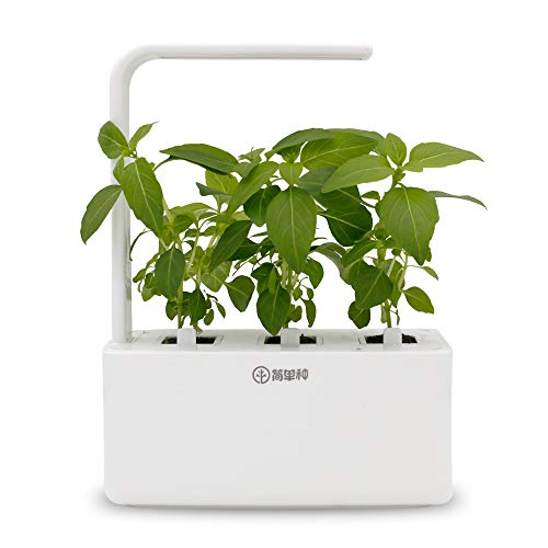 Indoor Herb Garden Kit Grow Light in US - 8