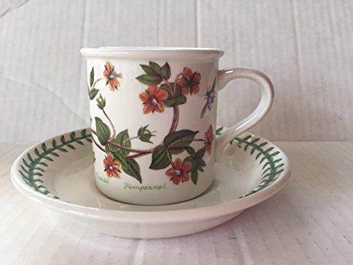 Portmeirion the Botanic Garden Flat Demitasse Cup & Saucer 2 5/8