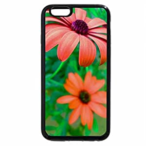 iPhone 6S / iPhone 6 Case (Black) Flowers