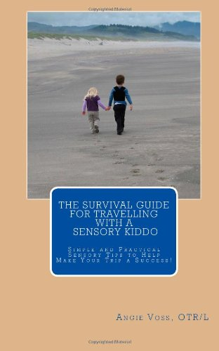 The Survival Guide for Travelling with a Sensory Kiddo: From amusement parks, to the beach or a weekend road trip to visit relatives...sensory help is here!