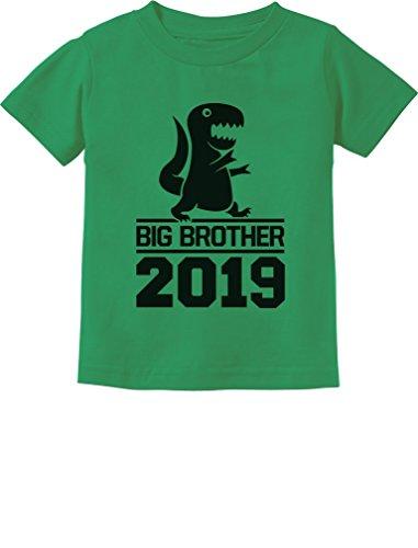 Tstars - Gift for Big Brother 2019 T-Rex Boy Toddler Kids T-Shirt 5/6 Green
