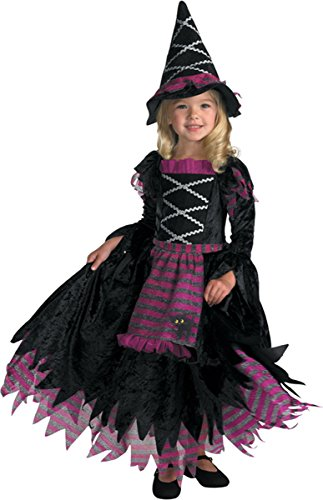 Disguise Fairytale Witch Toddler Costume - Toddler Medium -