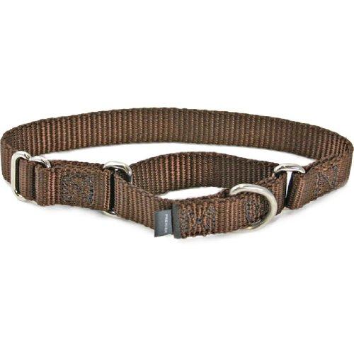 Premier Collar, 3/4″ Medium, Brown, My Pet Supplies