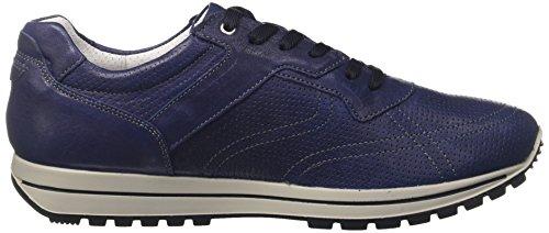 Usr Blu amp;CO Blu Sneaker 11213 Uomo IGI 4v5qB77