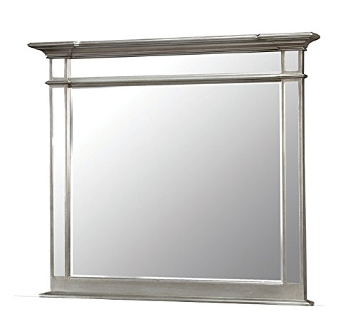 Amazon.com: Furniture of America Contemporary Style Mirror ...