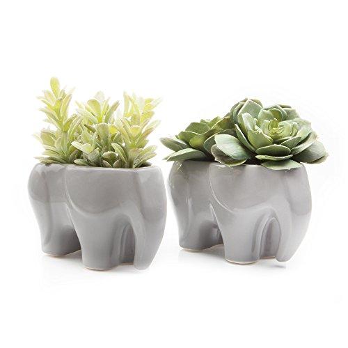 Chive - Set of 2 Animal Pot Elephant Shape Succulent/Cactus Planter Pot, 3