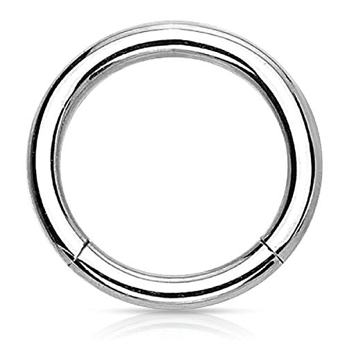(BodyJ4You Piercing Ring Hinged Segment Clicker 14G Hoop 8mm Surgical Steel Tragus Rook Daith Ear)