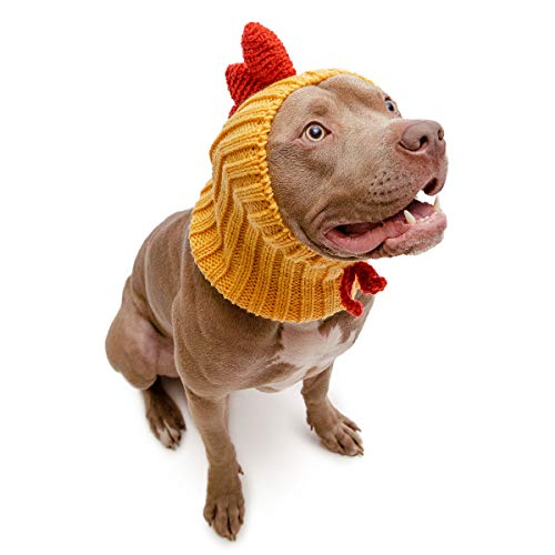Make A Chicken Costumes Hat - Zoo Snoods Rooster Chicken Dog Costume