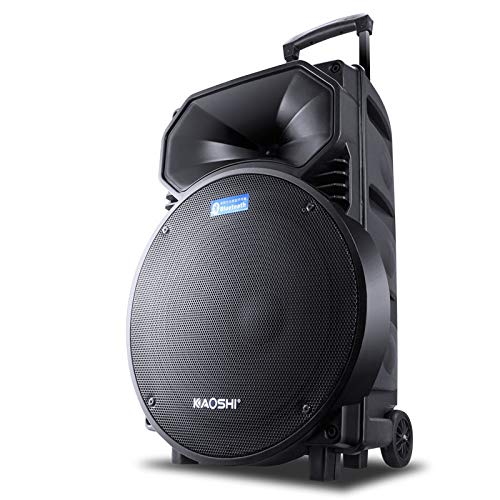 Luggage Style Outdoor Plaza Portable PA DJ Sound System -