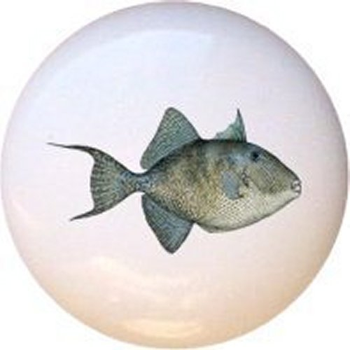 Gray Triggerfish Realistic Fish Decorative Glossy Ceramic Drawer Pull Dresser - Switchplate Light Decor Home Ceramic