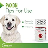 Paxon Cranberry Urinary Tract Supplement for Dogs
